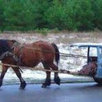 images-vehicule-partage-1